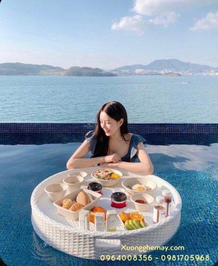 Khay nổi bể bơi, Khay đựng đồ ăn sáng nhựa giả mây7
