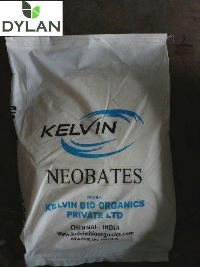 NEOBATES_Enzyme dạng bột, giảm tảo đỏ và khí độc trong ao1
