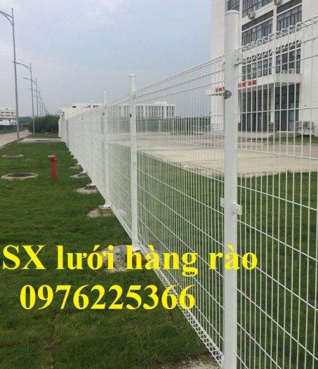 Hàng rào mạ kẽm sơn tĩnh điện D4, D5, D6, sản xuất theo yêu cầu6