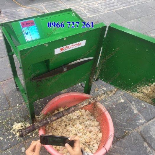 Máy băm cỏ voi, máy thái chuối, máy băm rau bèo giá rẻ0