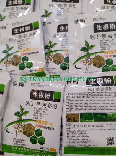 Thuốc siêu ra rễ cực nhanh Trung Quốc2
