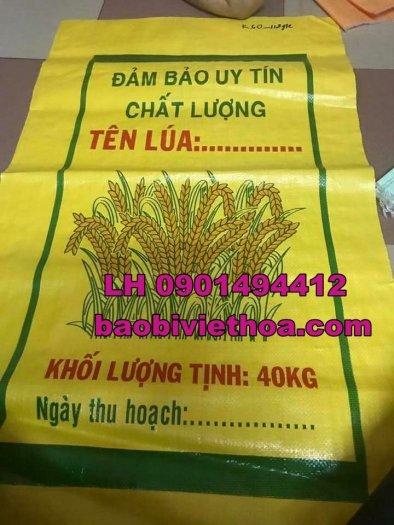 Bao đựng lúa giống, đựng gạo...2