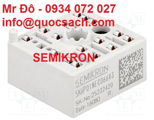 Công suất điện Semikron - Cầu chỉnh lưu thyristors Semikron2