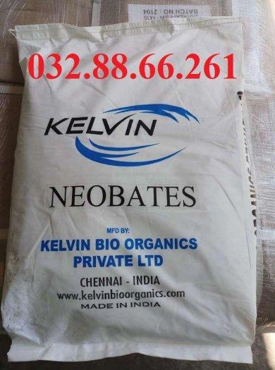 Enzyme cắt tảo, xủ lý nước Neobates0