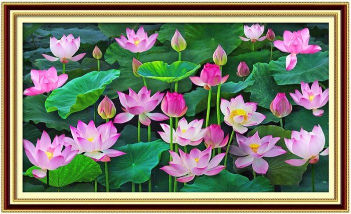 Tranh hoa sen 3d - tranh gạch 3d hoa sen - SCB54