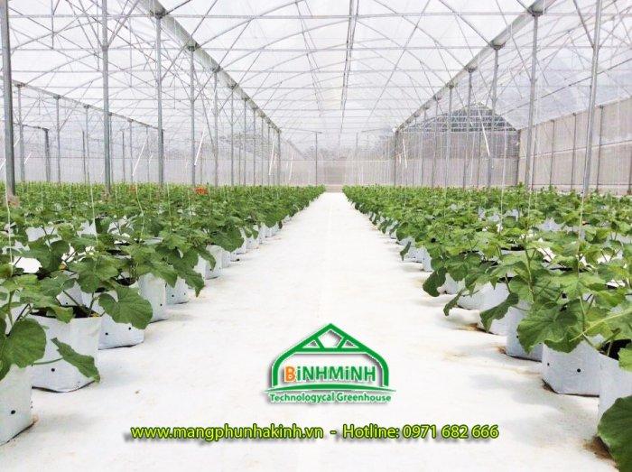 Bạt trải nông nghiệp,bạt phủ dưới đất, bạt địa nông nghiệp tại Hà Nội, bạt địa dùng cho nhà kính nhà lưới0