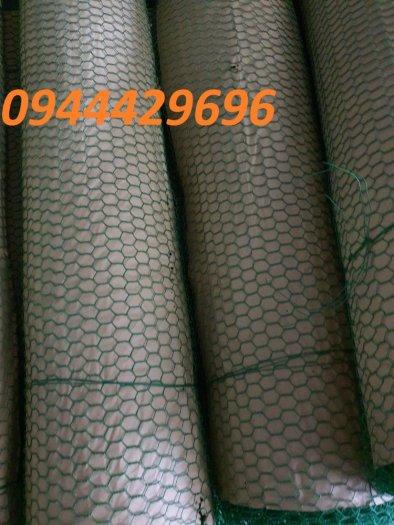 Lưới mắt cáo, lưới lục giác, lưới mắt cáo bọc nhựa, lưới mắt cáo mạ kẽm giá rẻ2