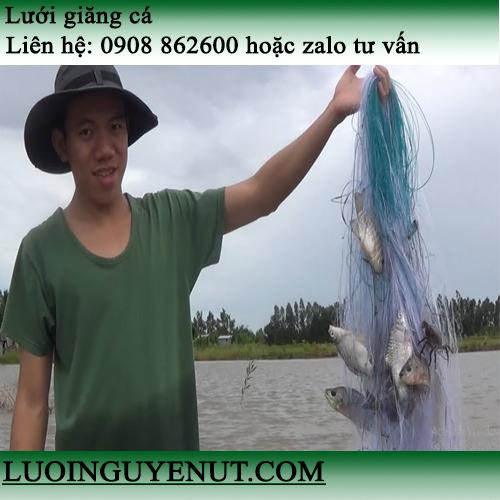 Lưới giăng cá ba màn Nguyễn Út0