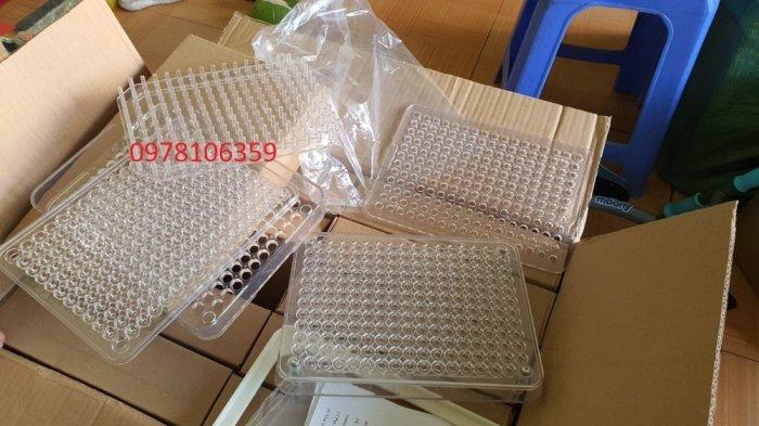 Khuôn đóng viên nang cứng giá rẻ, khuôn đóng viên nhộng 100v bằng nhựa0