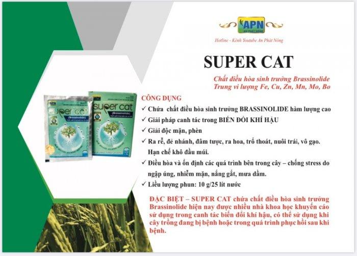 SUPER CAT Brassinolide điều hòa sinh trưởng cây trồng1