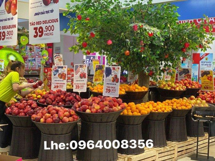 Khay trưng bày trái cây bằng nhựa giả mây trong siêu thị9