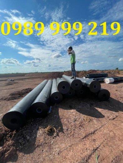 Bạt hdpe cuộn 150m2-khổ 3x50m-suncogroupvn1