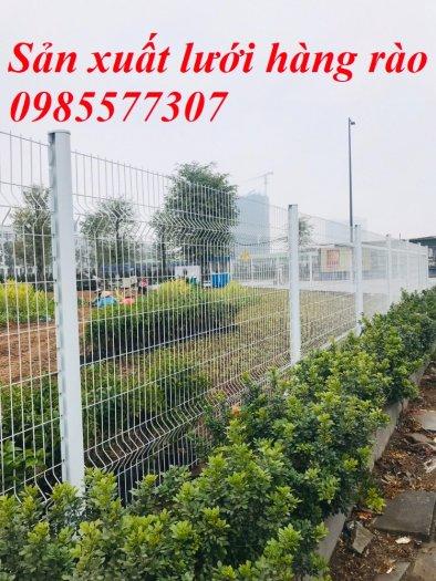 Sản xuất và thi công lưới hàng rào D4,D5 a50x150, D5 a50x2005