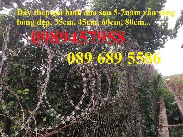 Bán dây kẽm lam đường kính 45cm, 60cm, 90cm tại Sài Gòn1