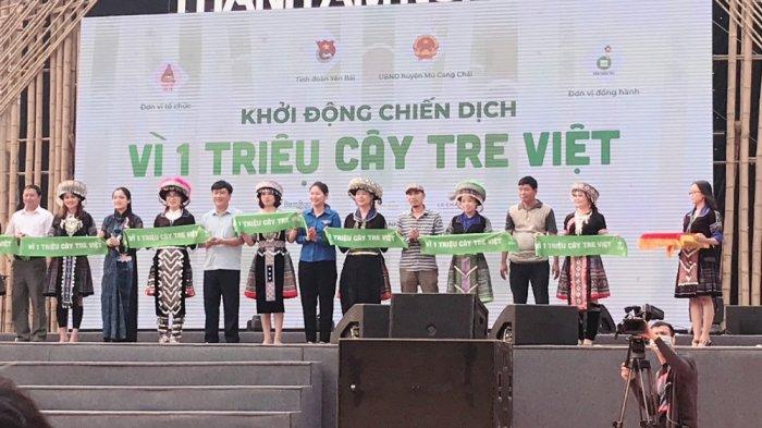 Vựa tre Sài Gòn - Bán cây tre công trình, bán cây tre nội thất, bán cây tre ốp tường3