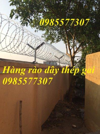 Cung cấp và thi công dây thép gai hình dao chống trộm giá rẻ tại Hà Nội3