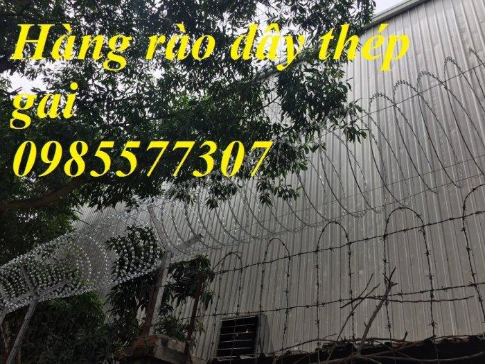 Cung cấp và thi công dây thép gai hình dao chống trộm giá rẻ tại Hà Nội1