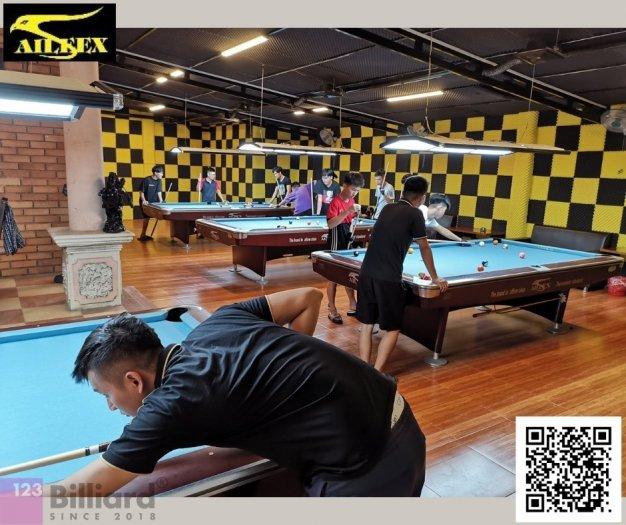 [Bàn bida Lỗ/ Pool Table] Bàn bida Aileex 9019 màu Nâu3