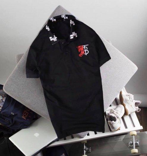 Áo thun nam cổ Bẻ thời trang cao cấp viền cổ TB1