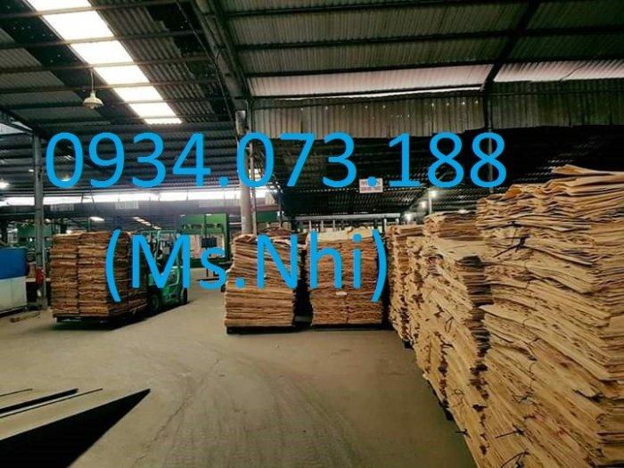 Nhà máy ván cốp pha phủ phim Tại Biên Hòa9