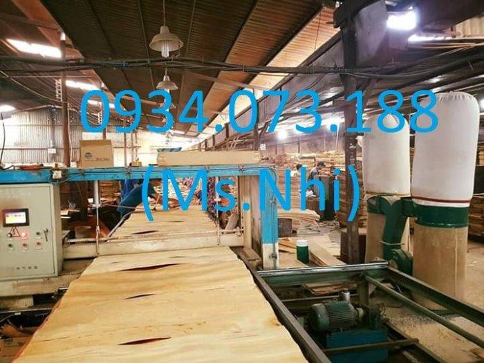 Nhà máy ván cốp pha phủ phim Tại Biên Hòa6