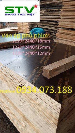 Nhà máy ván cốp pha phủ phim Tại Biên Hòa4