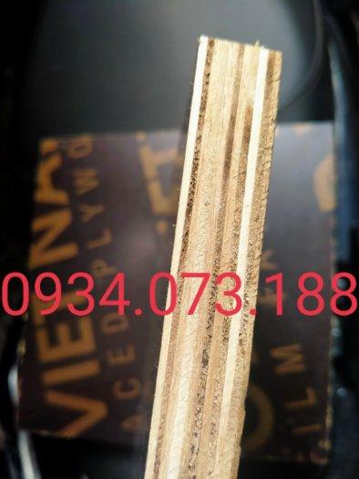 Nhà máy ván cốp pha phủ phim Tại Biên Hòa2