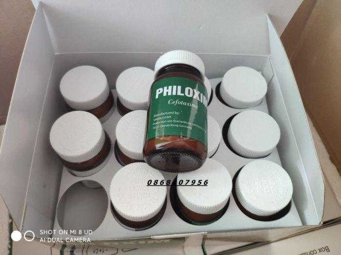 Philoxim0