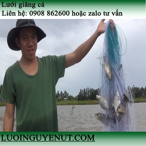 Lưới giăng cá chẽm, cá lóc lớn2