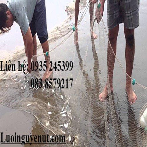 Lưới kéo cá chuyên nghiệp Nguyễn Út4