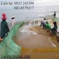 Lưới vét cá chuyên nghiệp Nguyễn Út1
