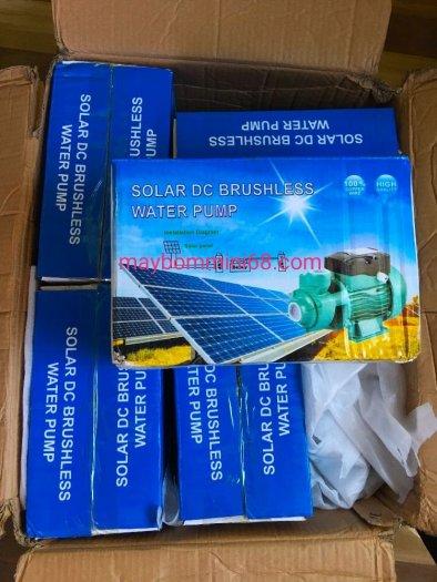 Máy bơm nước năng lượng mặt trời solar không chổi than 12v -150w đẩy cao 15m0