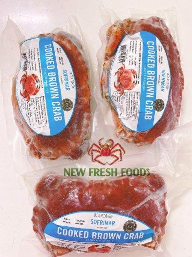 Cua Nâu Nauy - New Fresh Foods4