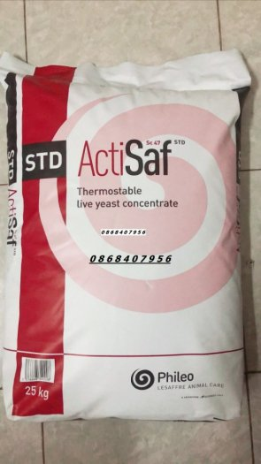 Nấm men đậm đặc Actsaf1