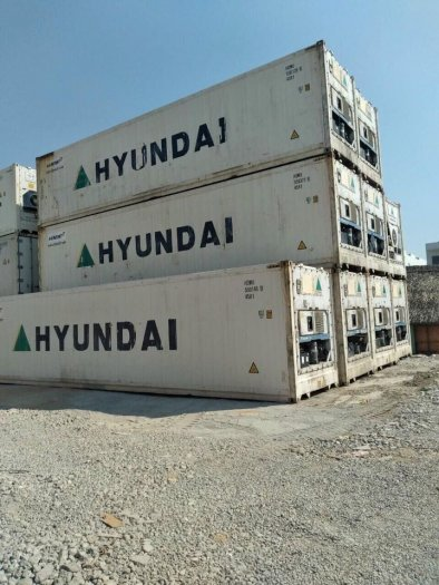Container lạnh bảo quản thị cá hàng đông lạnh4