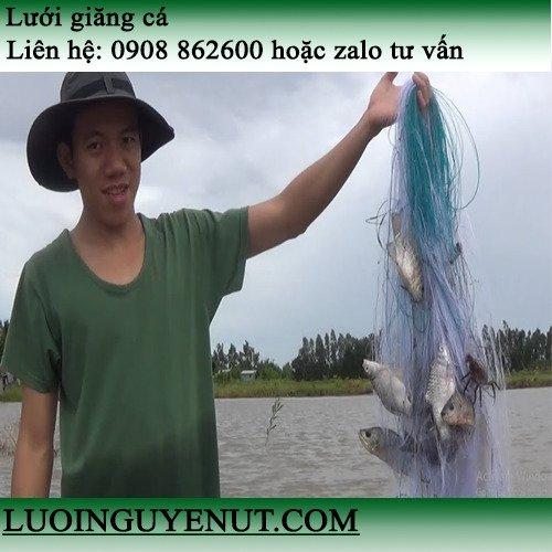 Chuyên lưới giăng cá siêu nhạy Nguyễn Út0
