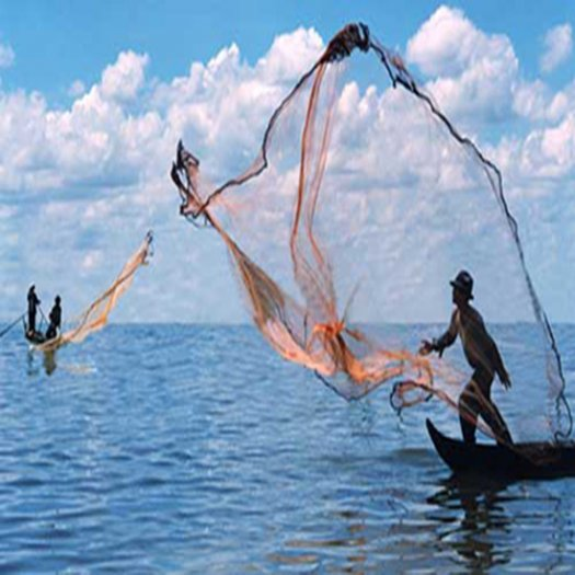 Chài cá ném bắt thủy hải sản0