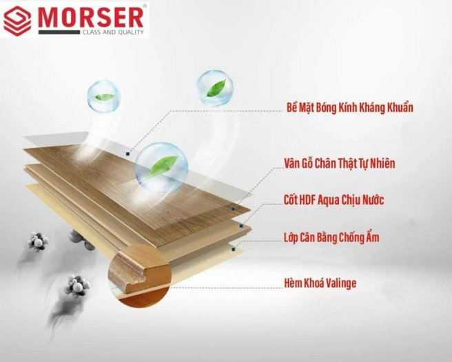 Sàn gỗ công nghiệp Morser1