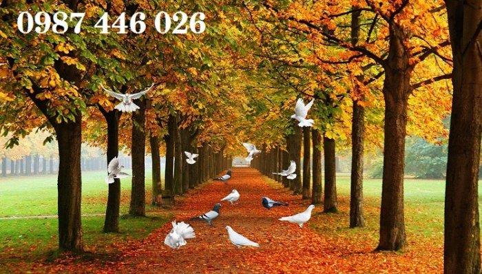Tranh gạch men phong cảnh hàng cây HP05873