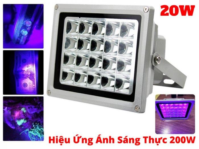 Cho Thuê Đèn UV Sấy Keo UV 20W Hiệu Năng Thực Tế Uv 200W2