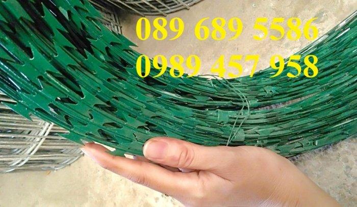 Dây kẽm gai bọc nhựa, dây thép gai hình dao bọc nhựa giá rẻ3