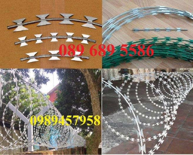 Dây kẽm gai bọc nhựa, dây thép gai hình dao bọc nhựa giá rẻ2