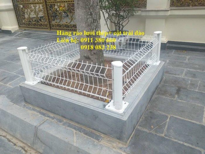 Hàng rào lưới thép mini đô thị, rào bồn cây, rào công viên,.... Nhật Minh Hiếu3