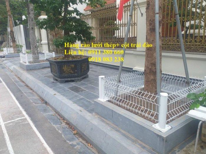 Hàng rào lưới thép mini đô thị, rào bồn cây, rào công viên,.... Nhật Minh Hiếu2