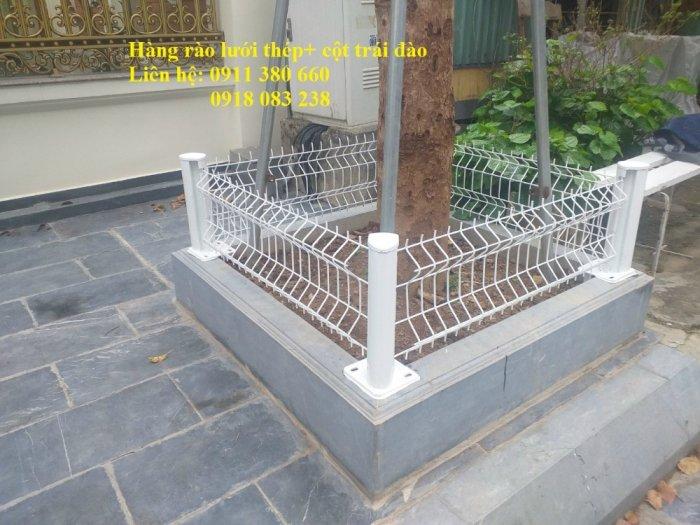 Hàng rào lưới thép mini đô thị, rào bồn cây, rào công viên,.... Nhật Minh Hiếu0