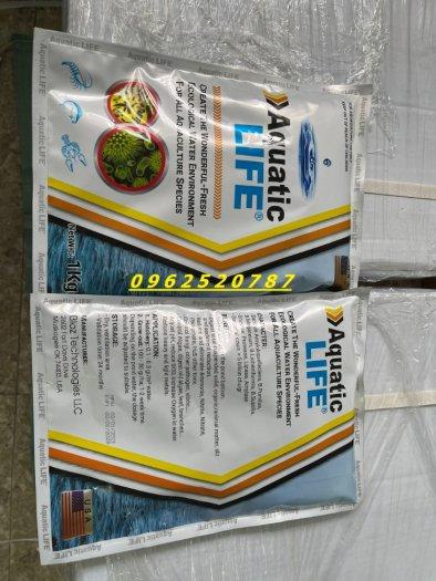 Aquatic Lite2