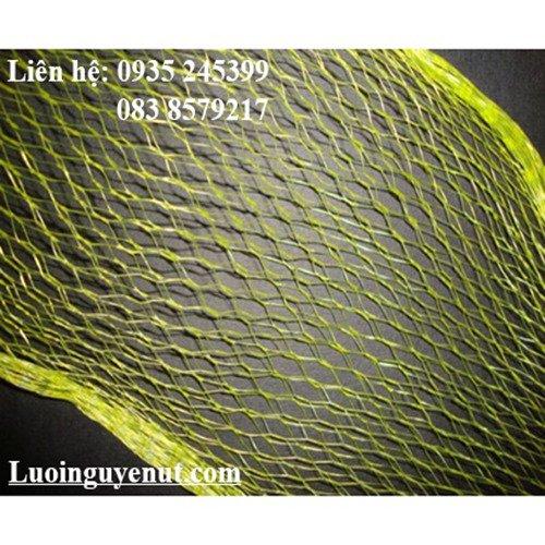 Lưới Trái Cây 1Kg 2Kg Đựng Bưởi2