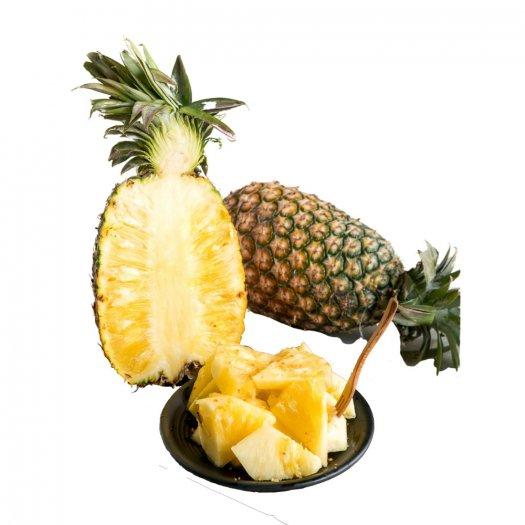 Chuyên cung cấp giống cây dứa MD2, cây dứa mật, dứa MD2 nuôi cấy mô, số lượng lớn, giao hàng toàn quốc21