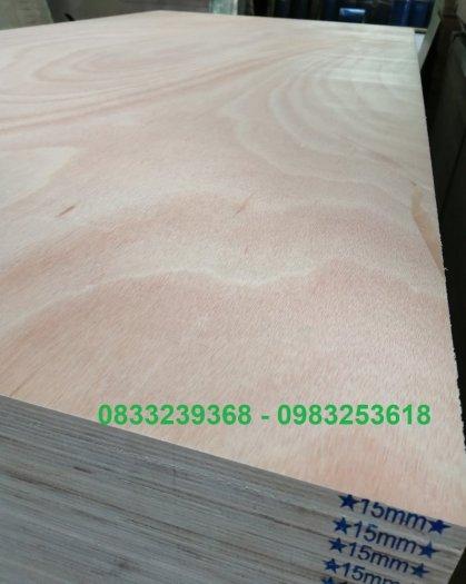 Ván gỗ dán 9mm, 10mm, 18mm5