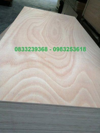 Ván gỗ dán 9mm, 10mm, 18mm4